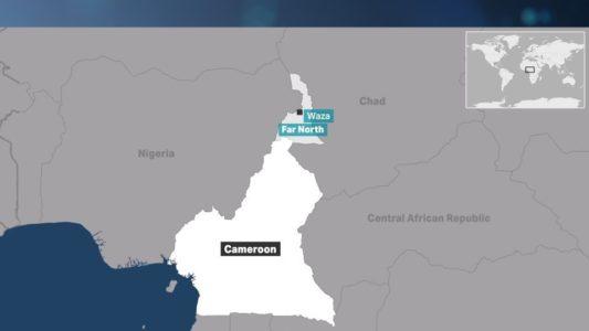 Cameroon - Suicide Bombers