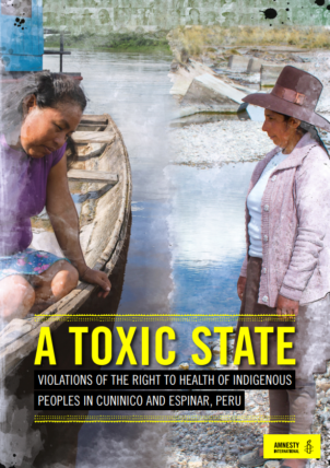 Amnesty International - A Toxic State