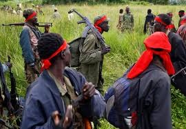 South Sudan - Tribal Militia Kills