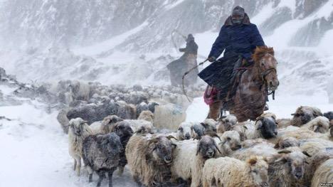kazakhstan ethnic mistreatment